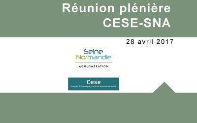 Assemblée plénière du CESE : les actions et les  projets du CESE